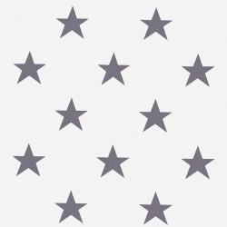 Roleta rzymska szara z gwiazdkami